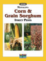Managing corn and grain sorghum insect pests