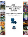 Annual progress and services report